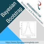 Bayesian Bootstrap