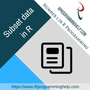 Subset data in R assignment help