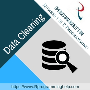 Data Cleaning Assignment Help