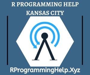 R Programming Assignment Help Kansas City