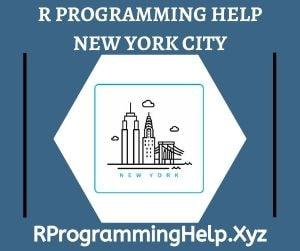R Programming Assignment Help New York City