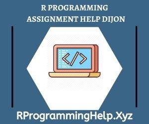 R Programming Assignment Help Dijon