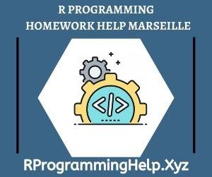 R Programming Homework Help Marseille