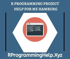 R Programming Project Help for Me Hamburg