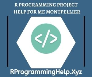 R Programming Project Help for Me Montpellier
